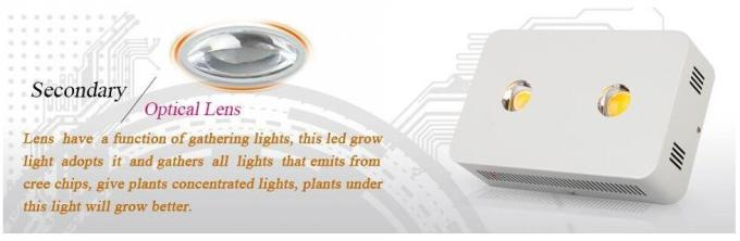 400 W CXA3070 Cree Led Grow Lights for Greenhouse Plants Germinating and Flowering