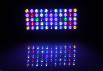 Freshwater Reef Blue Led Aquarium Lights With Controller , Aquarium Led Plant Light