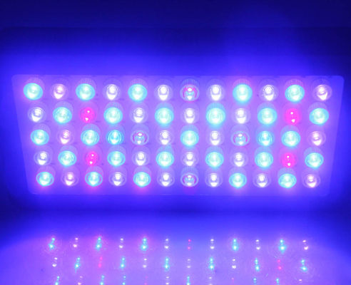 Full Spectrum Led Aquarium Lights 60x3w Epistar Leds , Led Aquarium Lamp