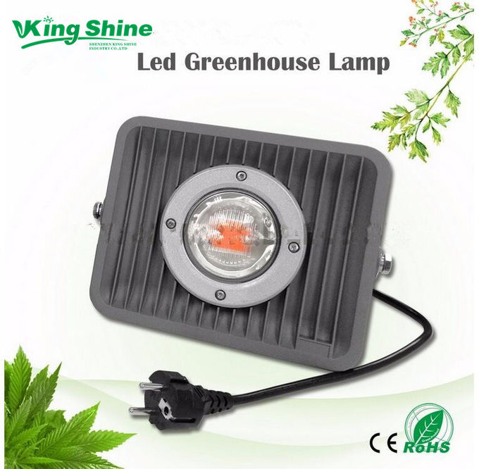 50 W Flood Type Cob Led Grow Light 7 Band Full Spectrum For Medical Plants